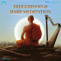 Didgeridoo & Harp Meditation