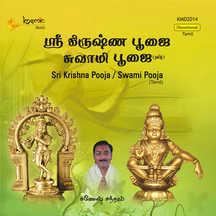 Sri Krishna Pooja - Swami Pooja