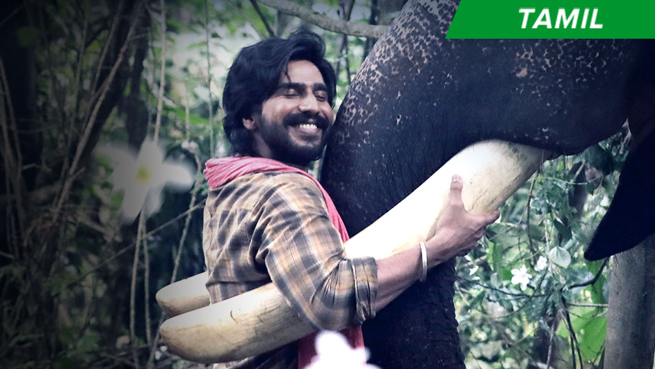 New Videos - Tamil